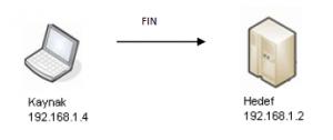 fin-scan-port-acik