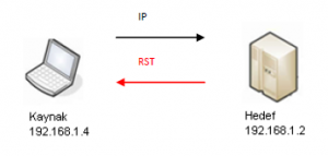 nmap-ip-protokol-2
