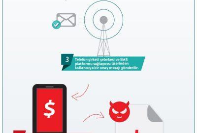 Boxer_infografik