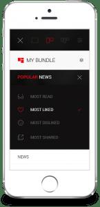 Bundle_populer