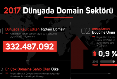 domain 2017 infografik