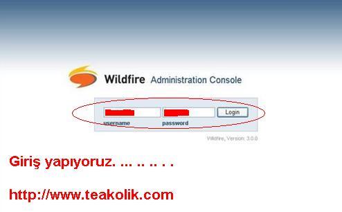 wildfire9-3.jpg